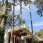 ház és természet